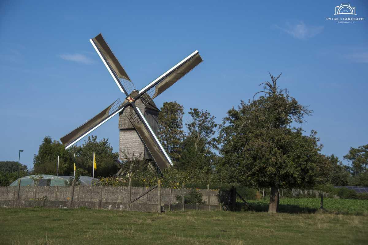 Oost-Vlaamse Molendag 2021