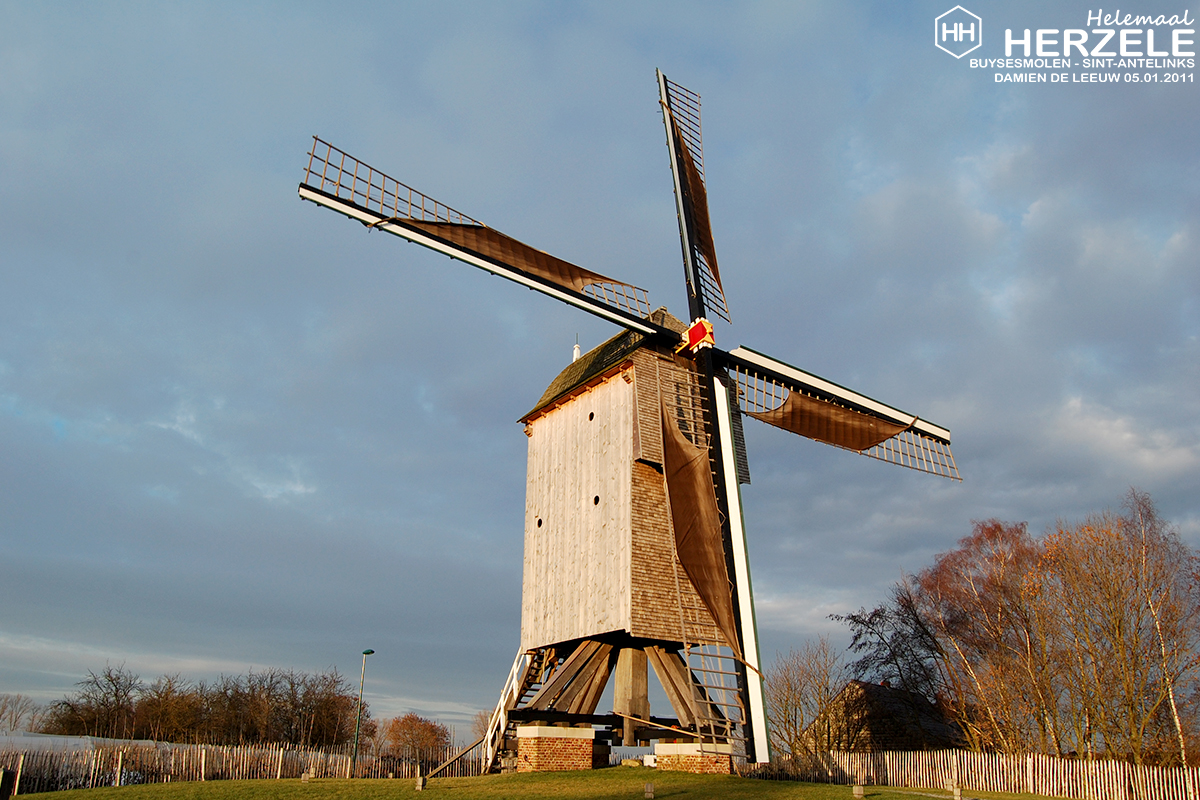 Buysesmolen Sint-Antelinks - ©Molensherzele.be